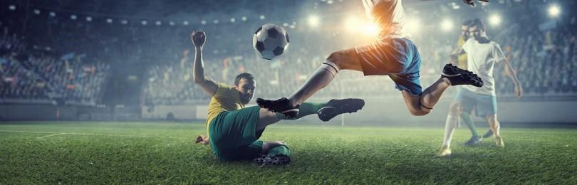 На какой вид спорта лучше делать ставки новичку