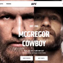 Прогноз боев UFC 246